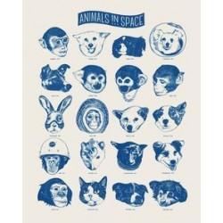 Tex og Jack plakat, Animals in Space, 40X50 cm